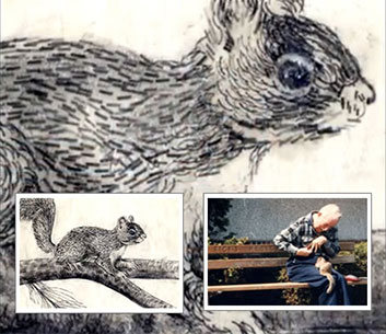 Paul Smith's Squirrel